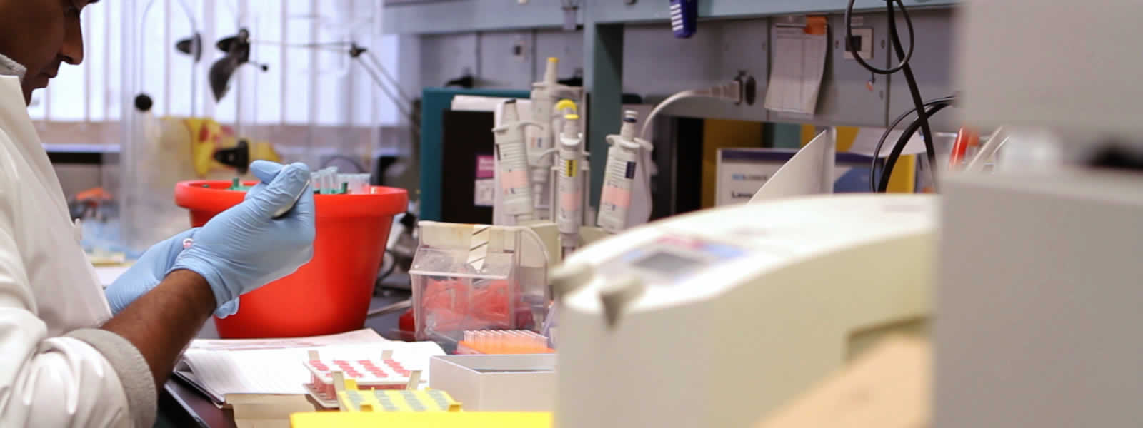 Key Industry: Life Sciences