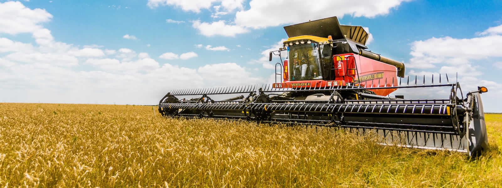 Key Industry: Agri-business